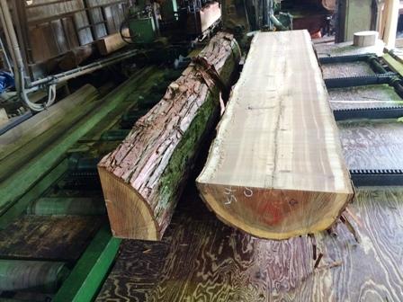 杉の建具材3