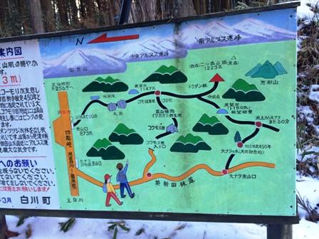 東濃桧の山3