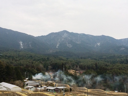 東濃桧の山1