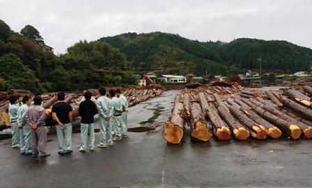 記念市木材